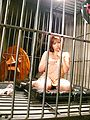 Neiro Suzuka - 大乳房内罗铃鹿使用大的亚洲假阳具下车 - 图片 2