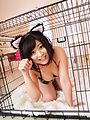 Aika Hoshino - Aika Hoshino wild cat fucks with vibrator - Picture 1